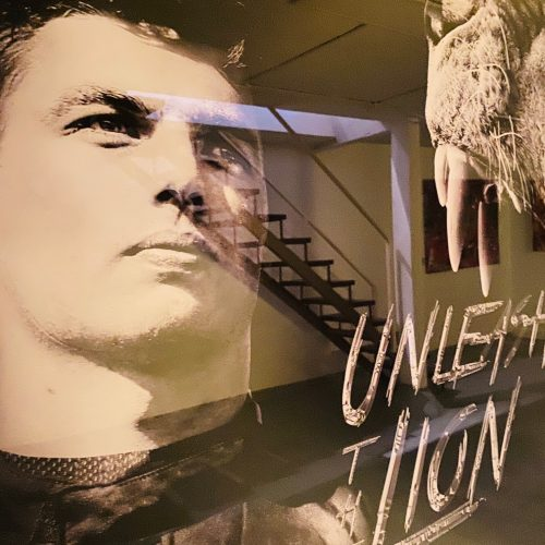 Tamara Sneep Max Verstappen Unleash the lion